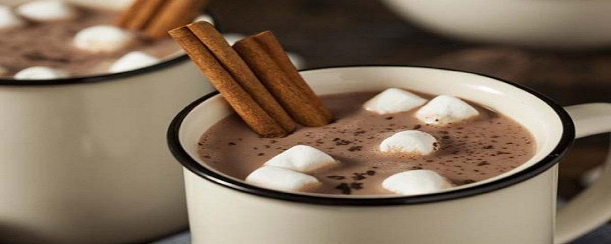 Hot Cocoa - back-to-nature-usa