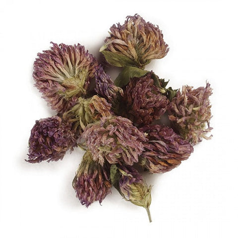 Red Clover Blossoms (Whole) - Kosher - Back to Nature USA