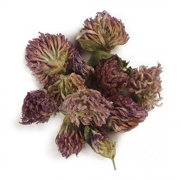 Red Clover Blossoms (Whole) - Kosher - (1.00 lb.) - back-to-nature-usa
