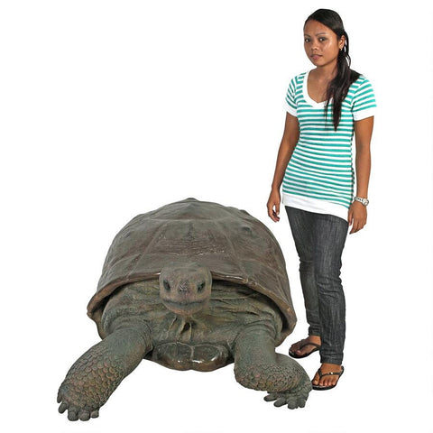 Grand Scale Galapagos Tortoise Statue - Sculptcha
