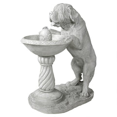Quenching A Big Thirst Saint Bernard Dog Garden Fountain