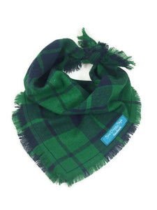 Plaid Dog Bandana with Fringe, Green and Blue Plaid