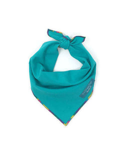 Teal Dog Bandana with Unicorn Rainbow trim