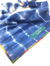 Load image into Gallery viewer, Indigo Shibori Bandana with Colorful Trim, Dog Bandana, blue and white, tie dye