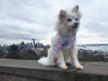 Load image into Gallery viewer, Dog Bandana, Pastel Plaid Bandana, Plaid Bandana, Choose your trim color!