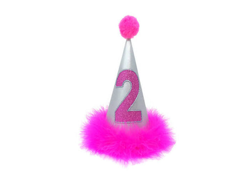 Birthday Hat for Dogs or Cats, Metallic Silver and Hot Pink