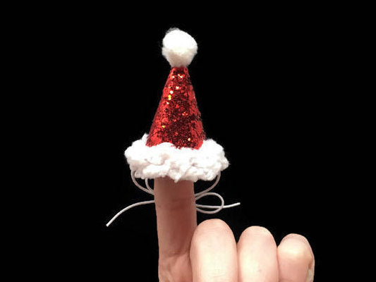 Mini Pet Santa Hat, Hedgehog Santa Hat, Chicken Santa Hat, Ferret Santa Hat, Iguana Santa Hat, Santa Hat, Mini Santa Hat