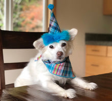 Load image into Gallery viewer, PBirthday Set - Bright Blue Plaid hat and Matching Bandana, Blue Dog Bandana, Dog Birthday Accessories Dog Birthday Set