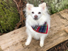 Load image into Gallery viewer, Preppy Plaid Dog Bandana, Red Bandana, Plaid Bandana, School Plaid, Traditional Plaid