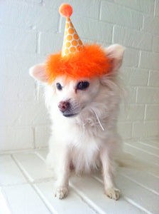 Dog Party Hat, Cat Party Hat, Orange Polka Dot