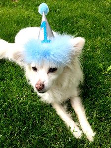 Birthday Hat for Dogs or Cats, Metallic Silver and Blue