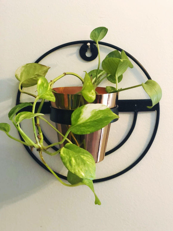 Wall Plant Holder - Black & Copper
