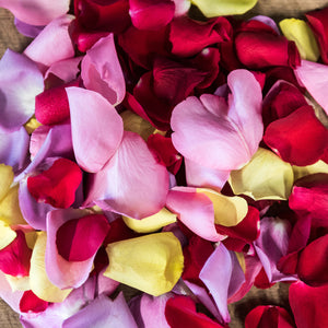LARGE BAG - MIXED ROSE PETALS
