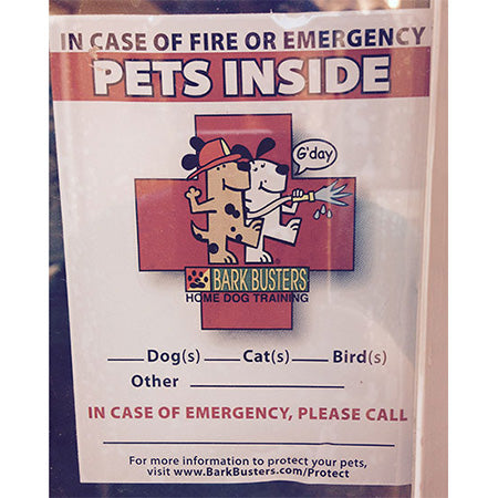 Pets-Inside-Safety-Decals-Global-dog-company