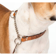bark-busters-leather-communication-training-collar-global-dog-company
