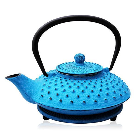 Blue Fuyu Cast Iron Teapot
