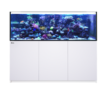 Load image into Gallery viewer, Red Sea - Reefer XXL 750 Complete System (160 gal)