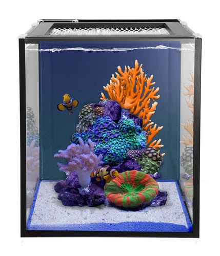 Innovative Marine NUVO Fusion 10 Pro - AIO 10 Gallon Aquarium Bundle