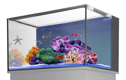 Innovative Marine NUVO Fusion 20 Pro - AIO 20 Gallon Aquarium Bundle