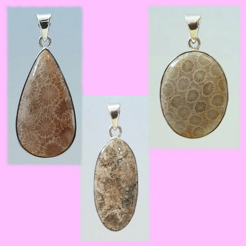 Fossilized Coral Sterling Silver Pendants - Charming And Trendy Ltd