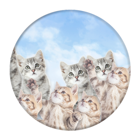 SKY KITTIES