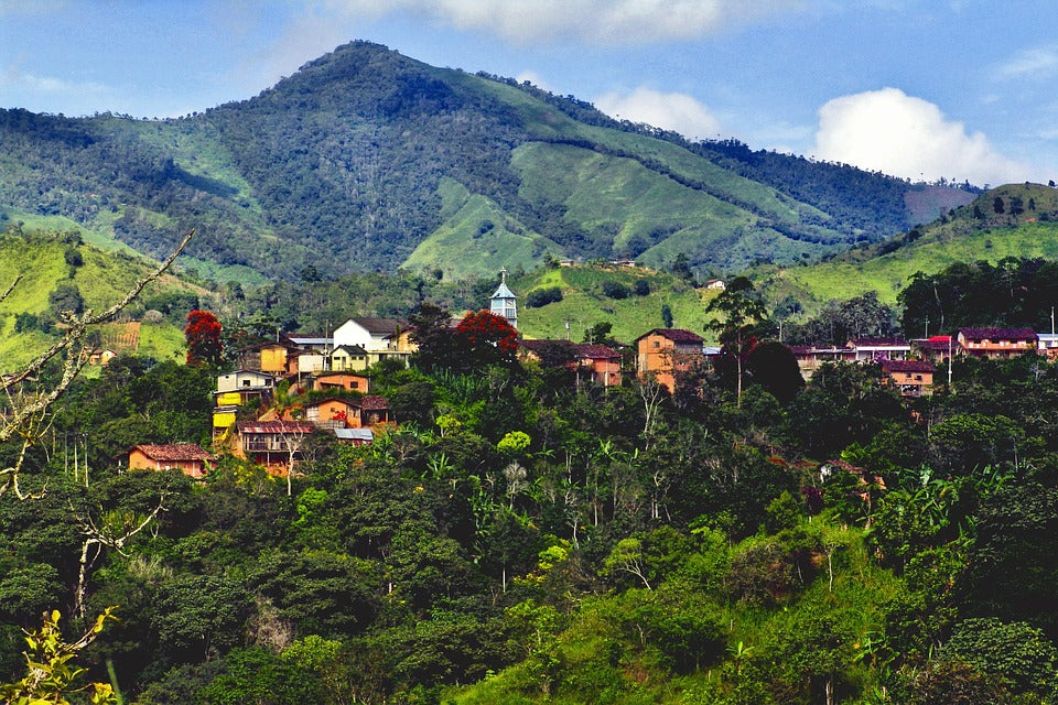 Exploring Ecuador: The Home of chocho