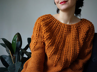 picture of a womens torso wearing a rust orange crochet jumper with really defined stitches down the front. three is a light grey wall in the background there is a leafy rubber plant on the left