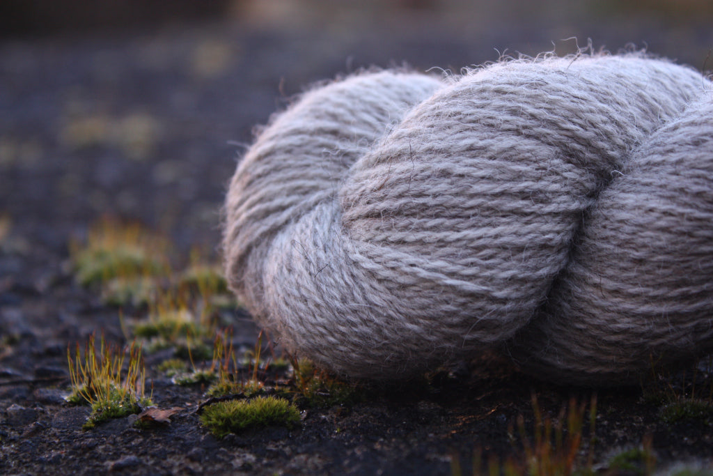 close up of the end of a skein of yarn. the yarn is a natural light brown colour, defined twist and a bit of a halo. It is sat on a wet mossy concrete coal bunker.