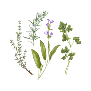 Bouquet Garni Set