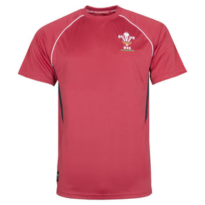 Wales WRU Rugby Kids Panel Poly T-Shirt | Red