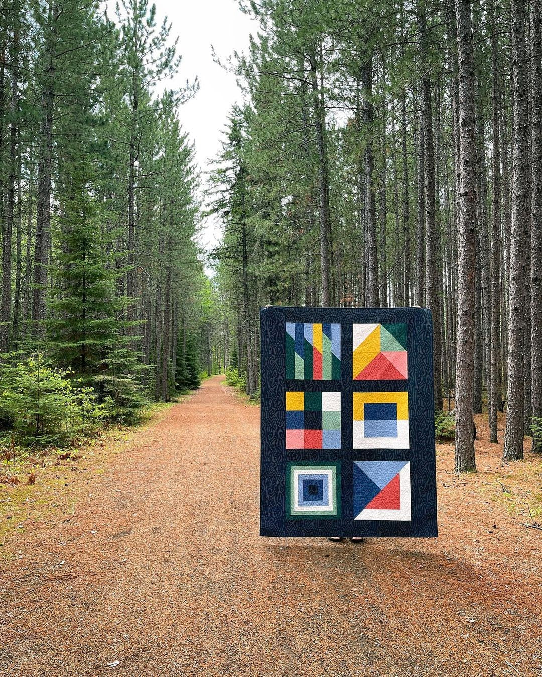 Boreal Forest Cover Quilt 1