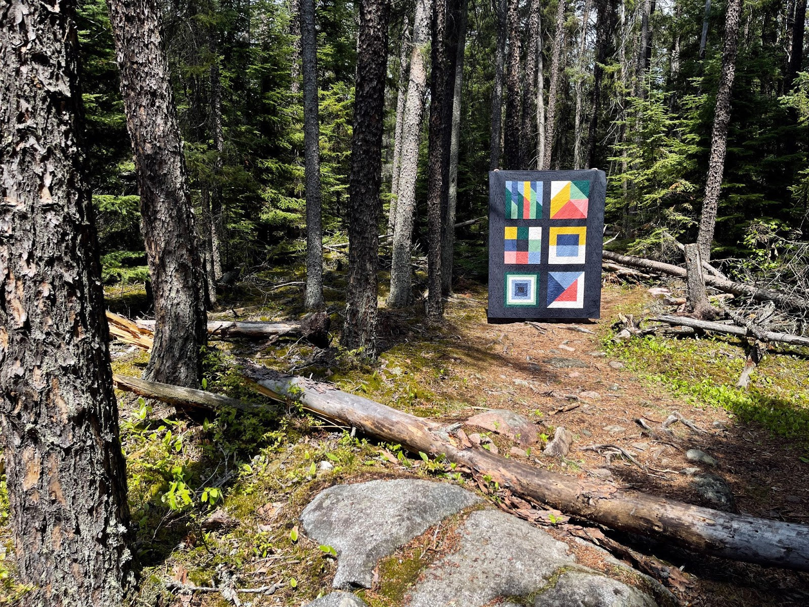 Boreal Forest Cover Quilt