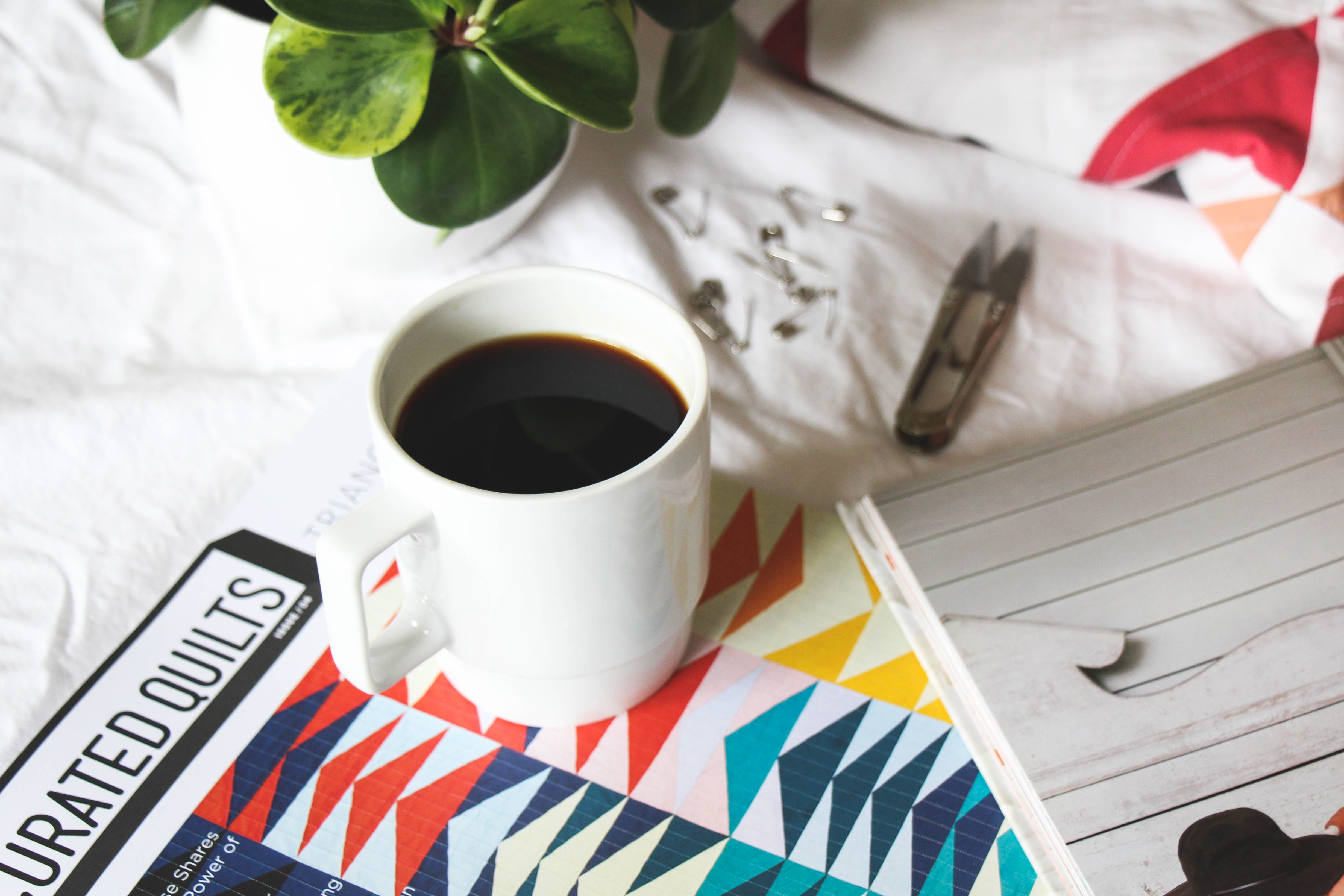 TBS Must Have Quilt Books: Coffee & Notions
