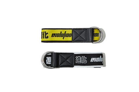 Evolution Belt