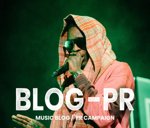 Music Blog / PR Campaign (30 Days)