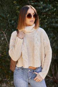 Darla Turtleneck Sweater