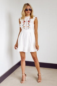 Amesbury Embroidered Mini dress