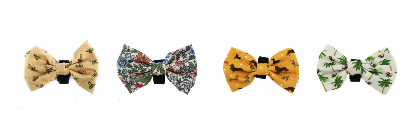 Bowties | Coco and Chili's Shop