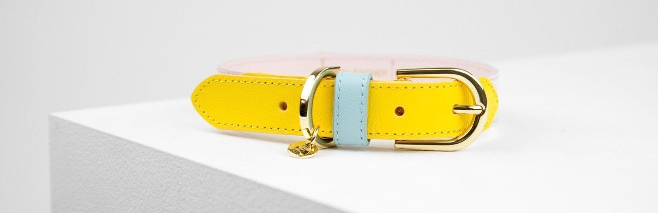 Collars | Coco and Chili's Shop