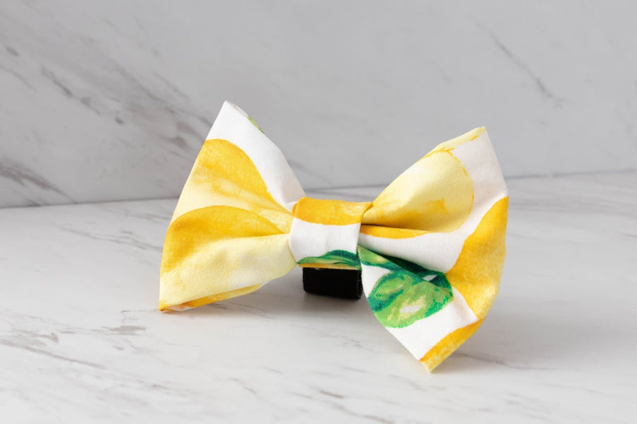 Bowtie - Lemon Drop - Coco and Chili's Shop