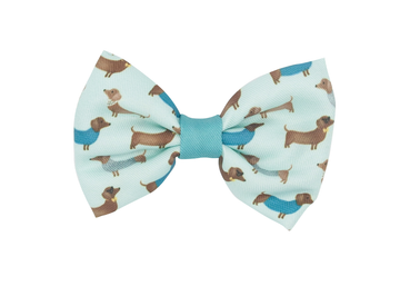 Bowtie - Sassy & Posh - Coco and Chili's Shop