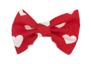 Bowtie - So in Love