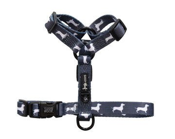 Strap Harness - Classy - Coco and Chili's Shop
