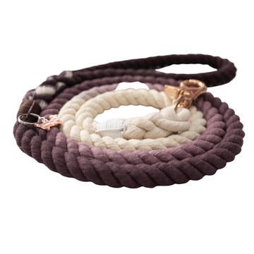 Rope Leash - Ombre Gray