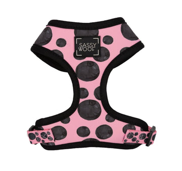 Adjustable Harness - Dotty - Coco and Chili's Shop