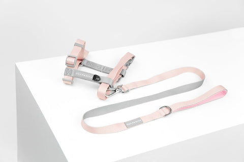 Daphne Harness & Leash Set