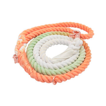 Rope Leash - Honeydew