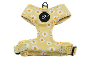 Adjustable Harness - Yellow Daisy