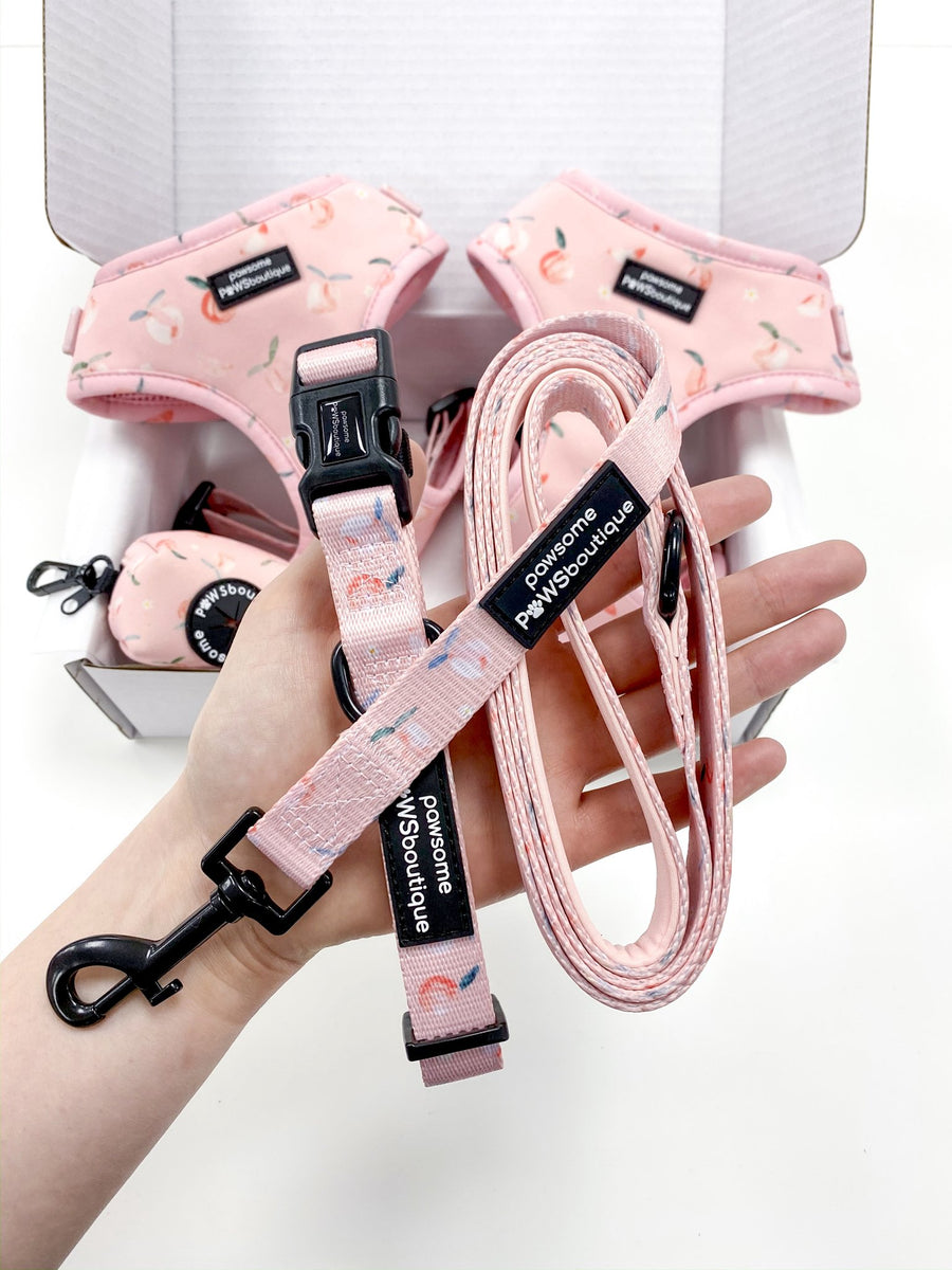 Leash - Peachy Perfect