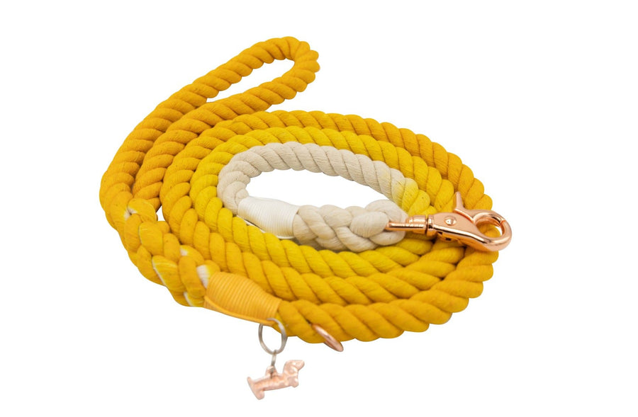 Rope Leash - Lemon Drop